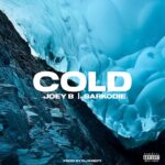 Joey B ft Sarkodie – Cold